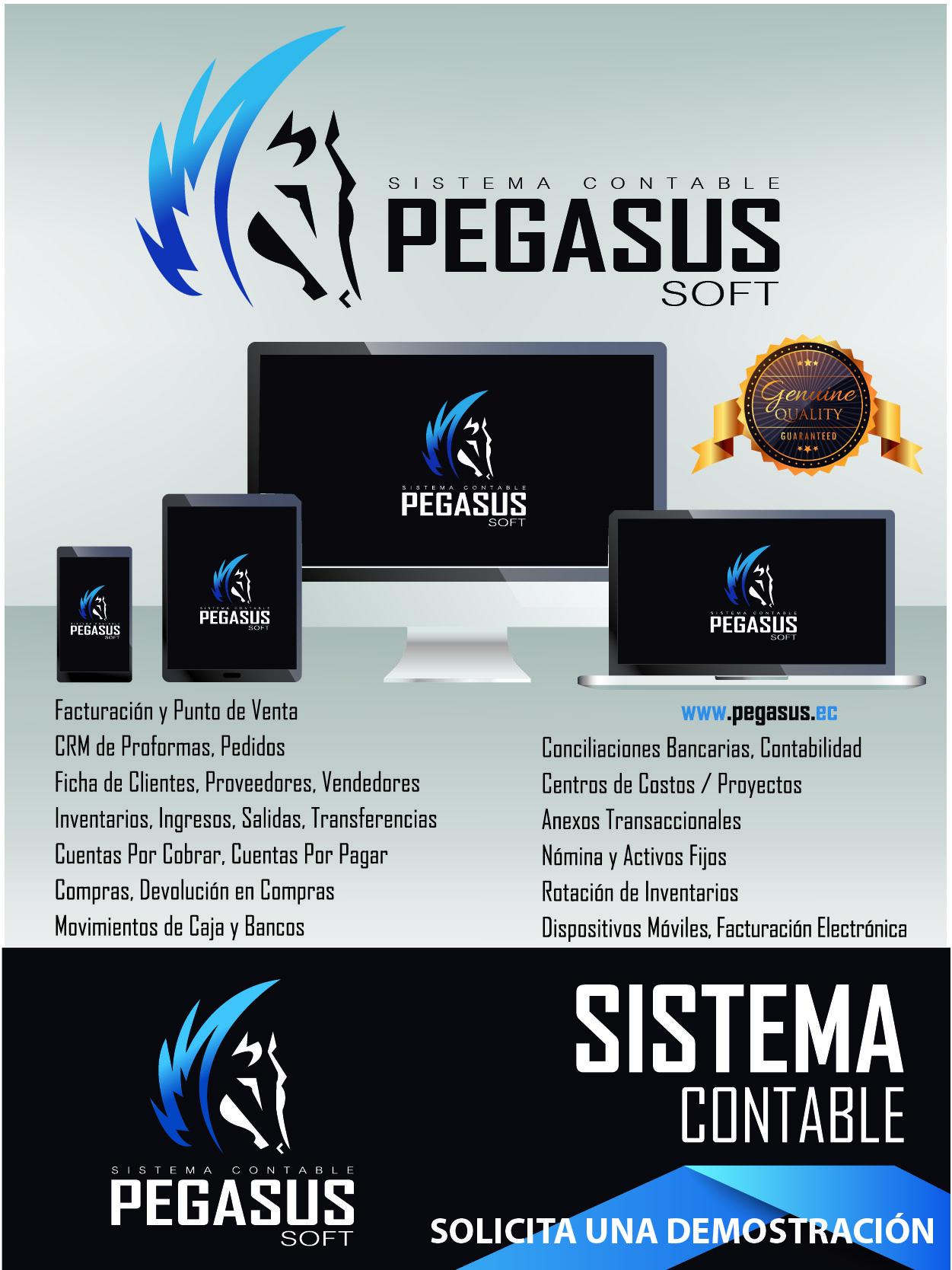 Sistema Contable Pegasus Ecuador